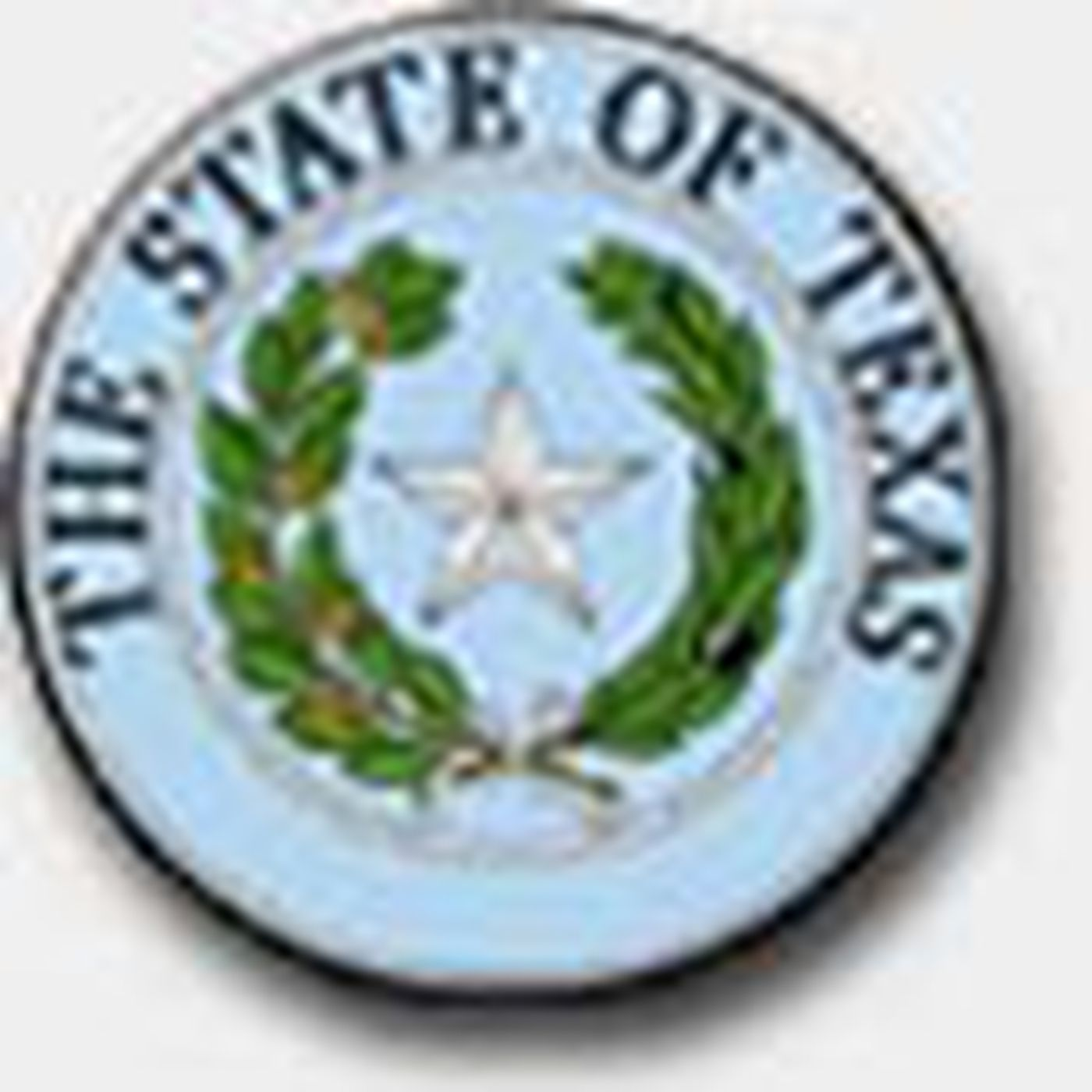 TDCJ Serious Incident Review