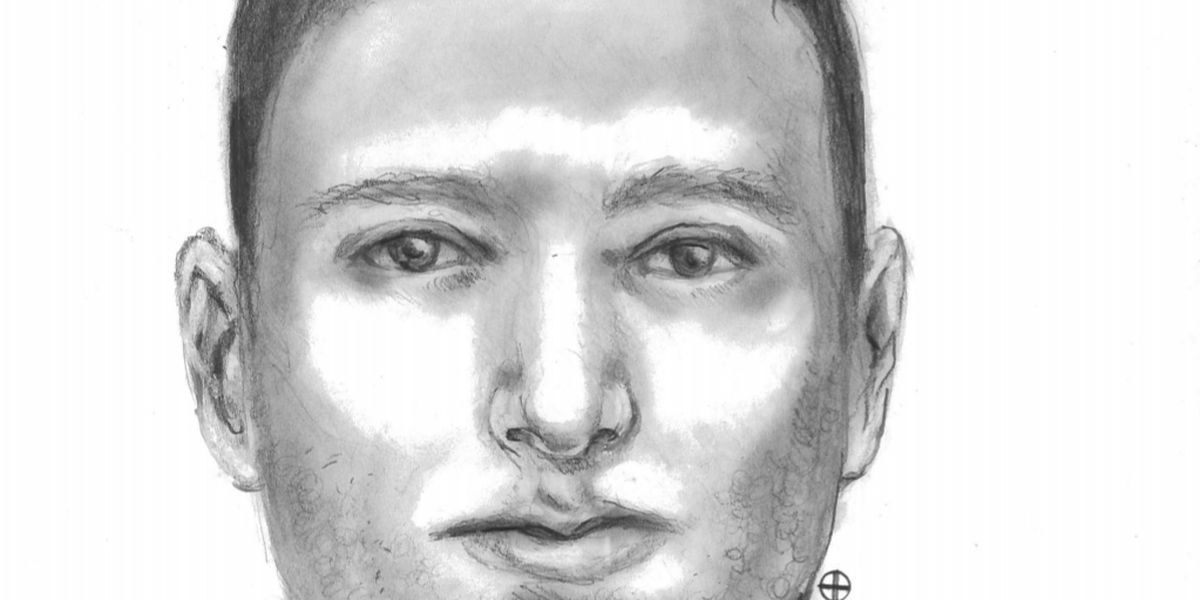 LPD Detectives using forensic sketches to track down suspects