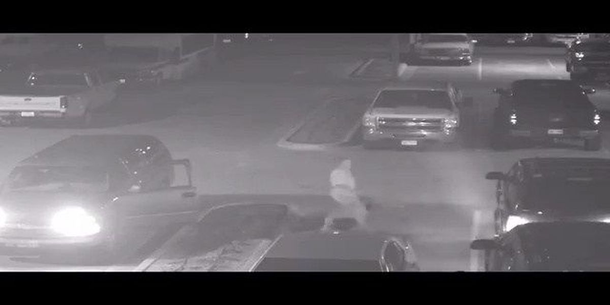 LPD VIDEO: Police searching for vehicle burglary suspect