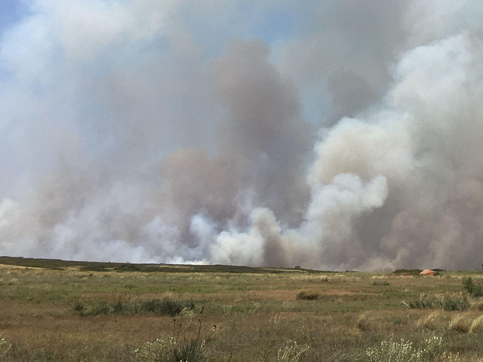 PHOTOS: Firenado from Bird Ranch fire NE of Paducah