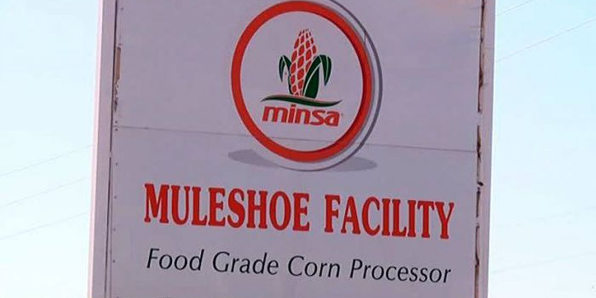 Muleshoe corn flour mill cited for 33 serious violations before explosion