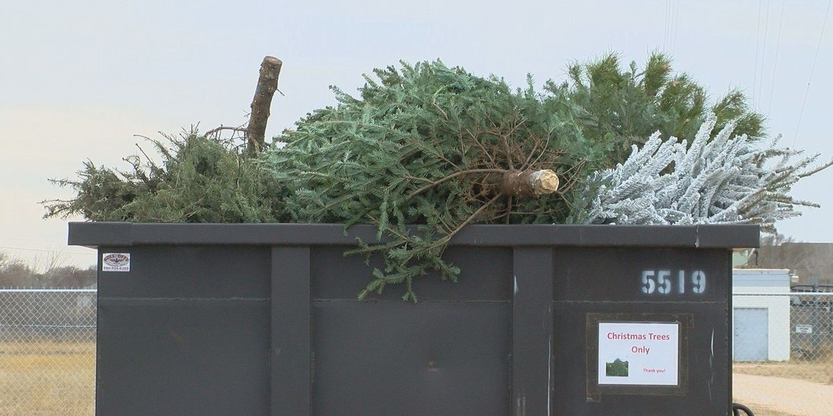 Recycle to avoid dry Christmas tree fire hazard