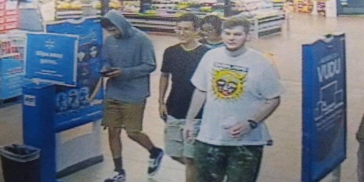 Wolfforth Police searching for persons of interest in Frenship Mesa Park vandalism