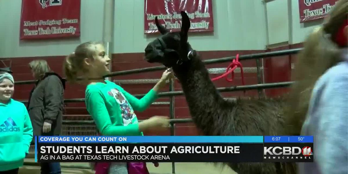 "Fourth graders learn all about Agriculture at ""Ag in a Bag"""
