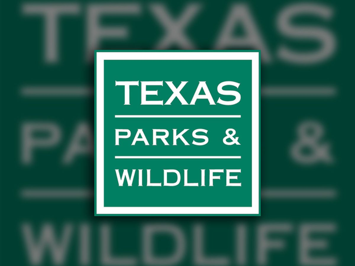 3 Texas Parks and Wildlife employees die in West Texas helicopter crash