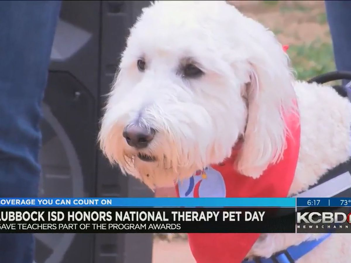 LISD teachers honored with their dogs on National Therapy Pet Day