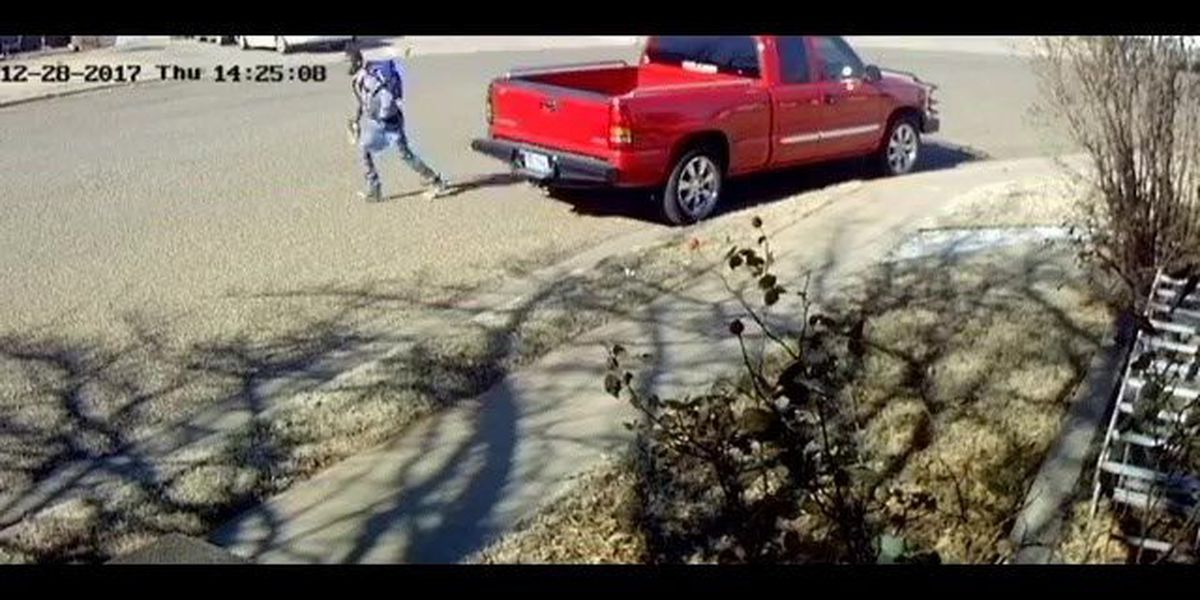 Lubbock police searching for vehicle burglary suspect