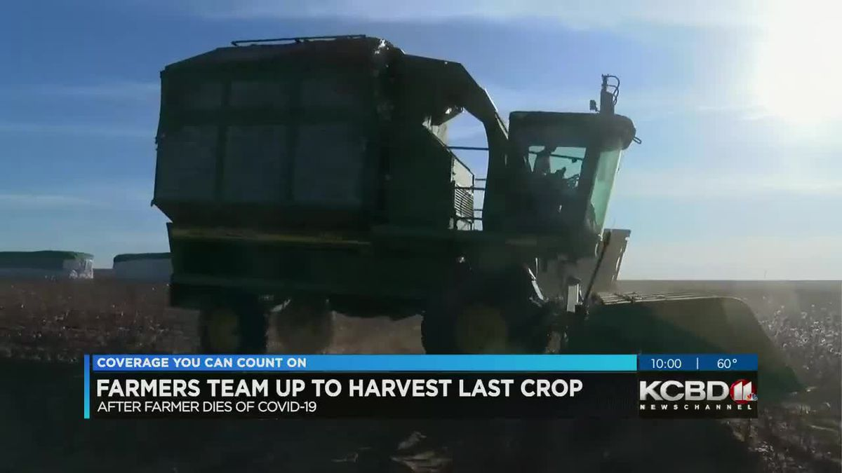 Farmers team up to harvest last crop for friend who died from COVID-19