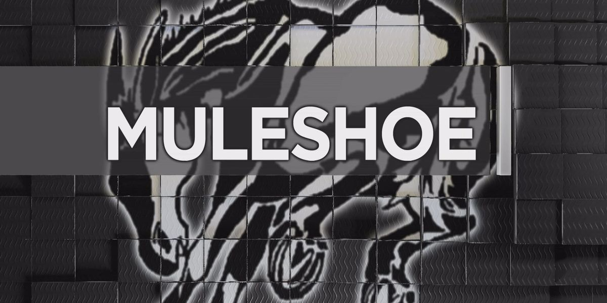 Pigskin Preview: Muleshoe Mules
