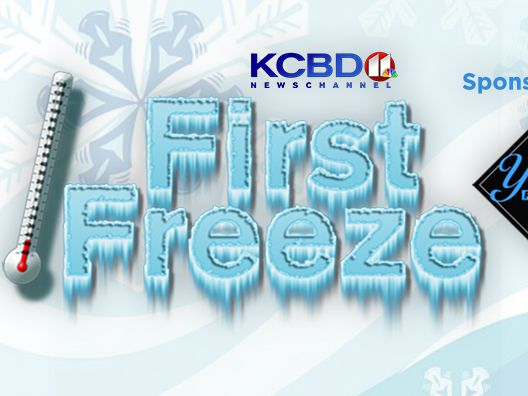 First Freeze Official Promotion Rules