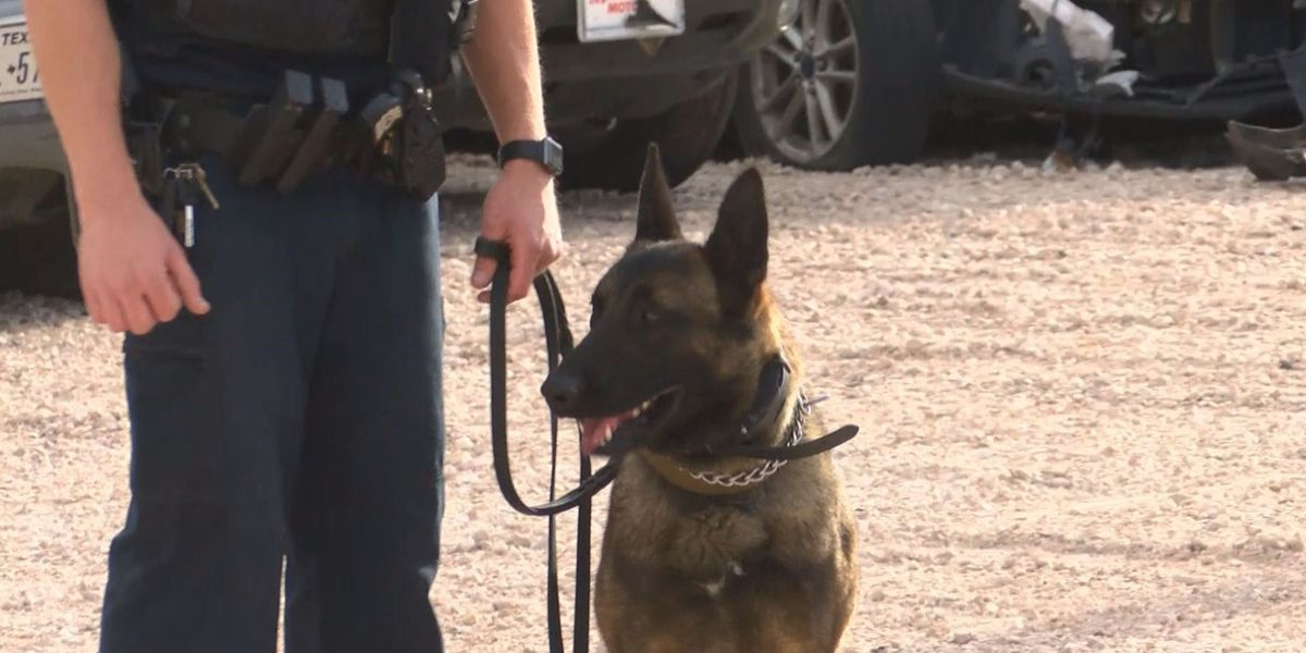 LPD K9's bring home honors from national conference