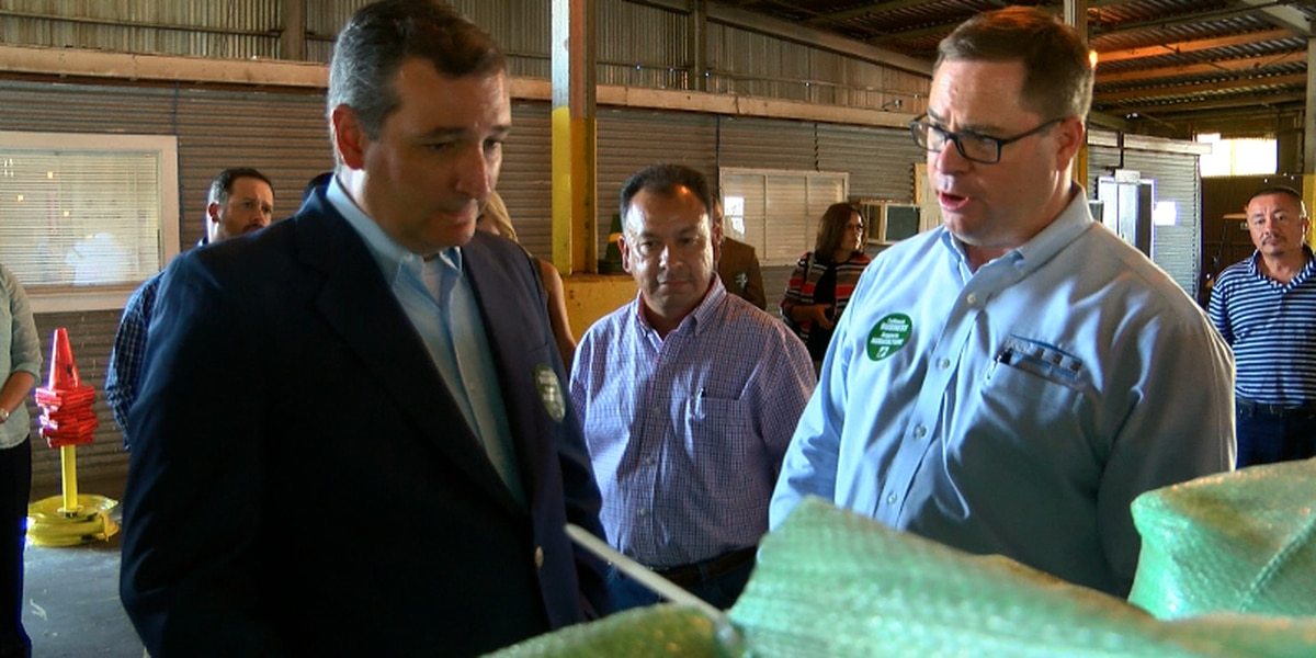 Sen. Ted Cruz talks cotton at Lubbock's Farmers Cooperative Compress