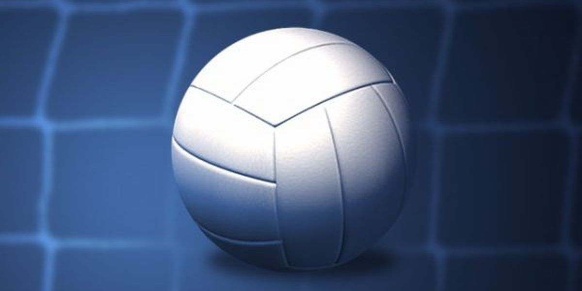High School Volleyball Scores: 9/11