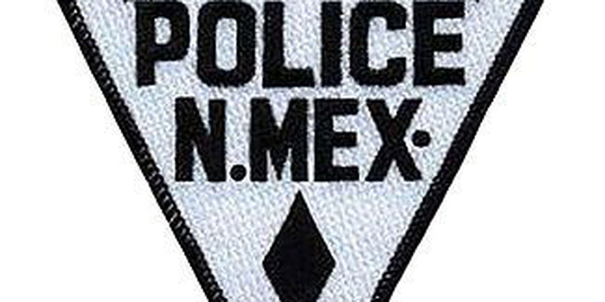 New Mexico State Police investigating fatal crash in Lea County