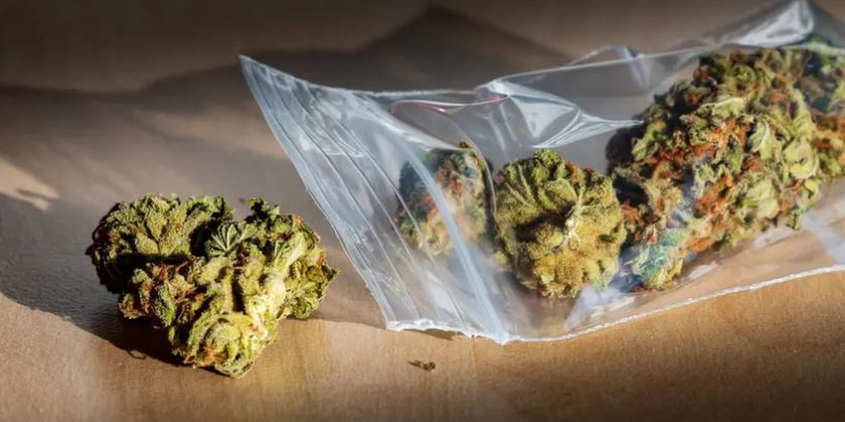 The criminal penalty for possessing small amounts of marijuana would be reduced under a bill OK'd by the Texas House