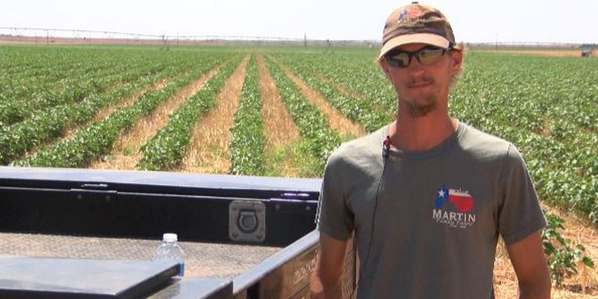 Brownfield farmer appeals to congressman to lift new restrictions on Dicamba herbicide