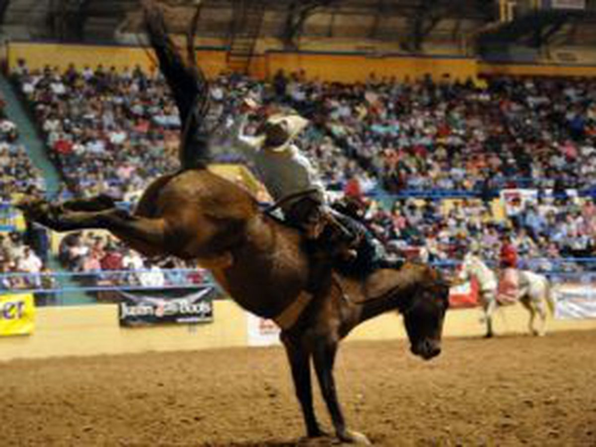 ABC Pro Rodeo to be postponed until 2021