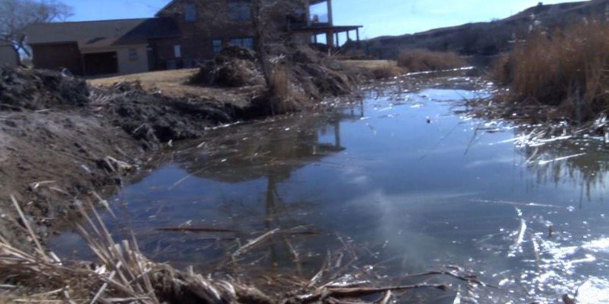 Buffalo Springs Lake board considers cattail project, fee increase