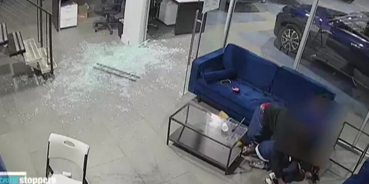 Father struck with bullet shielding 3 kids from gunfire at NYC car dealership