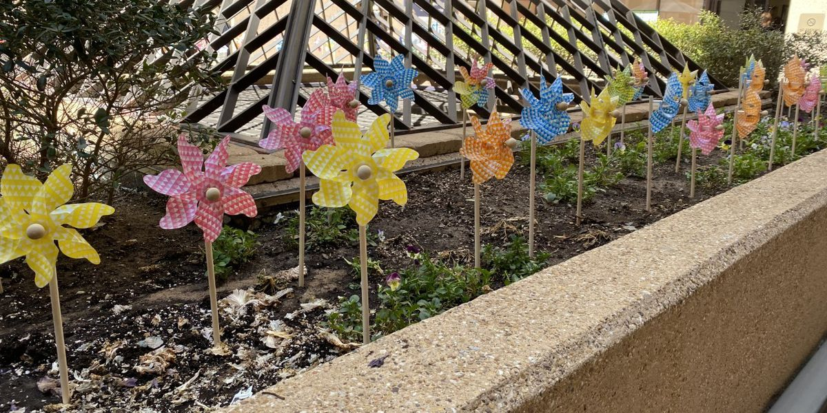 Pinwheels for Prevention: UMC, Children's Advocacy Center working to end child abuse