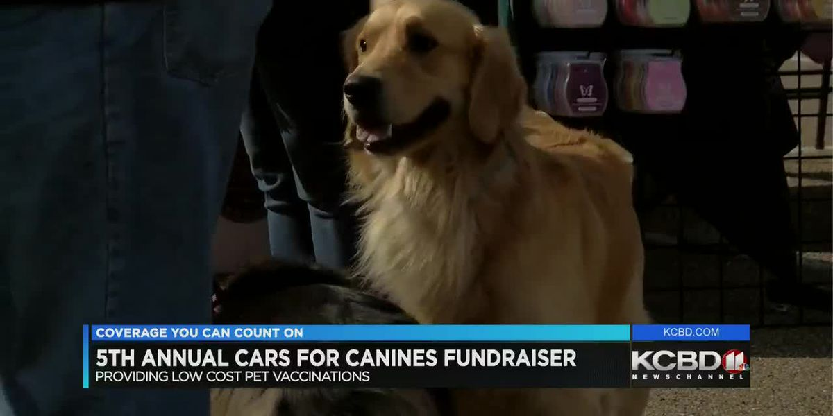 Animal, car lovers gather for Cars for Canines event