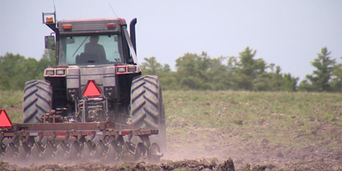USDA to provide relief to farmers, ranchers, producers