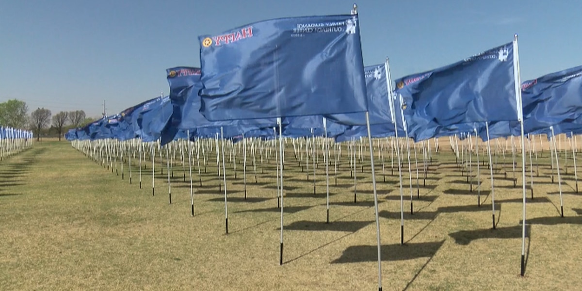 1,032 flags represent victims of child abuse in Lubbock County