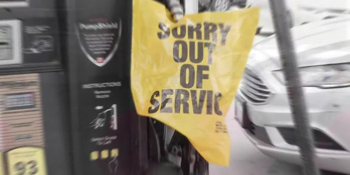 Americans afraid of fuel shortage could end up causing one