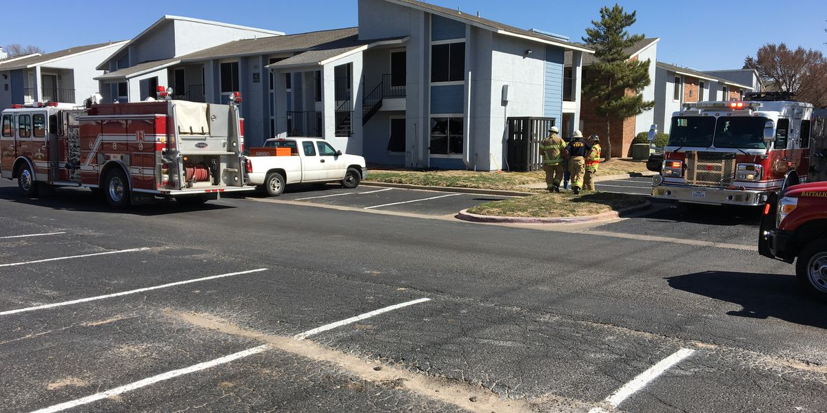 Woman in custody after fire at Meridian Park Apartments
