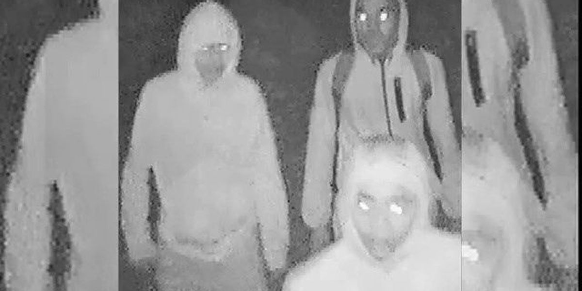 LPD VIDEO: Lubbock police searching for group of 4 vehicle burglary suspects