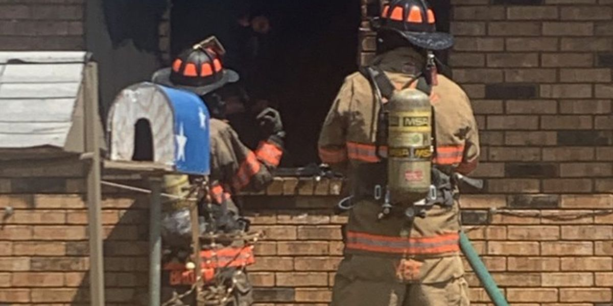 Firefighters save 14 dogs from house fire in Dalhart