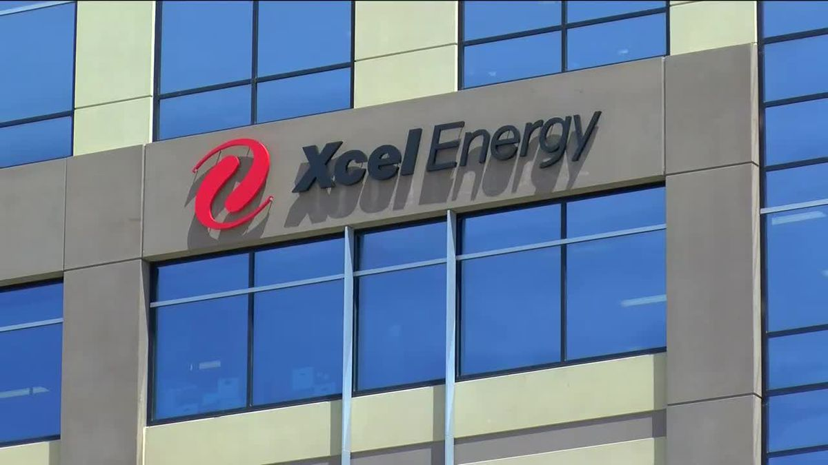 Xcel: Customers can now pay bill via Google Assistant