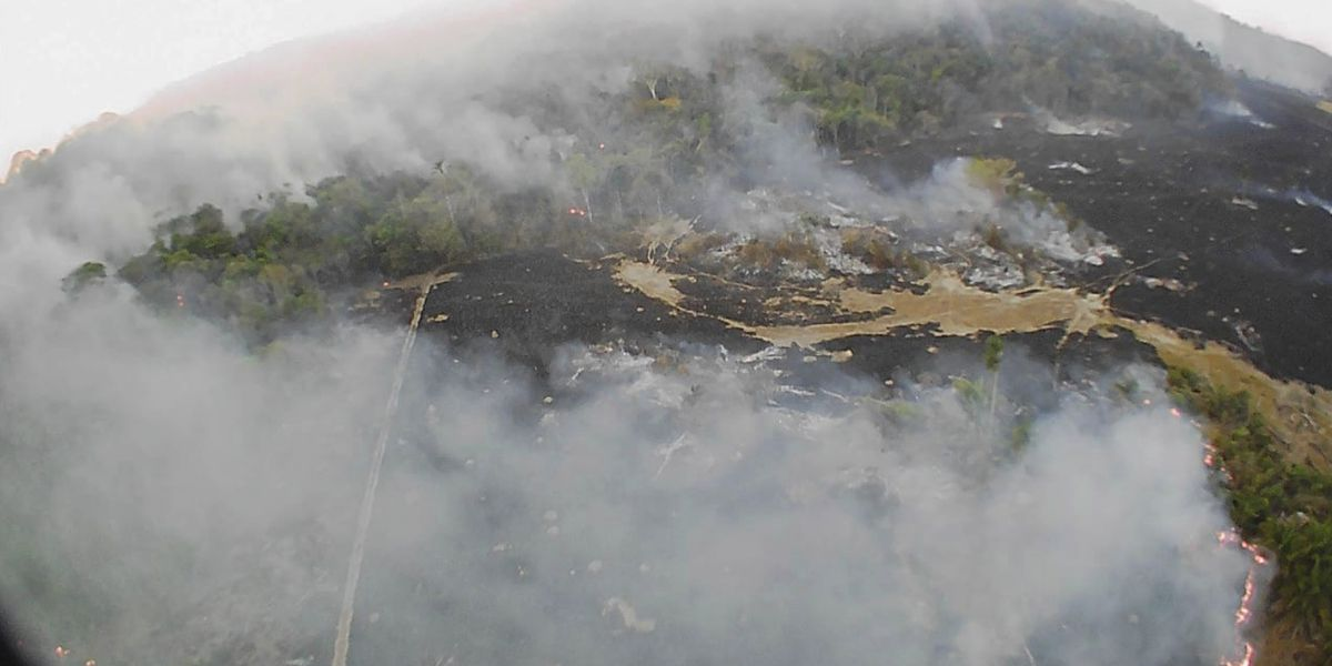 Rights group blames Brazilian government for Amazon rainforest fires