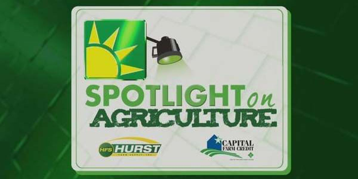 Spotlight on Ag: National Dairy Month