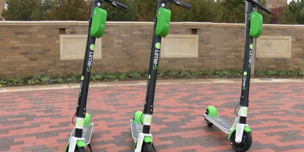 Uber driver concerned with Lime Scooter regulations