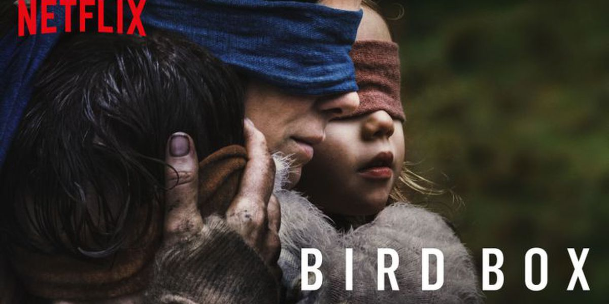 Netflix raises movie-viewership curtain with 'Bird Box'