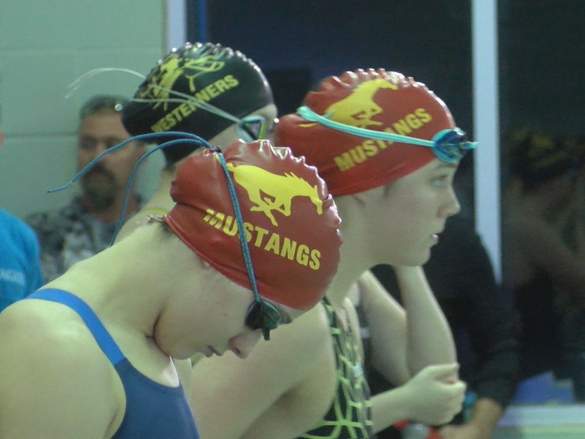 Swimmers & divers compete in District 3-5A meet