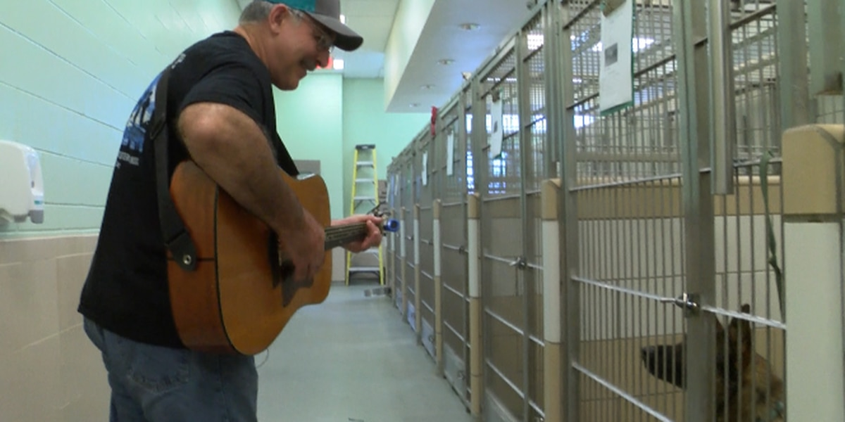 Lubbock Animal Shelter serenades pets to make their stay more comfortable