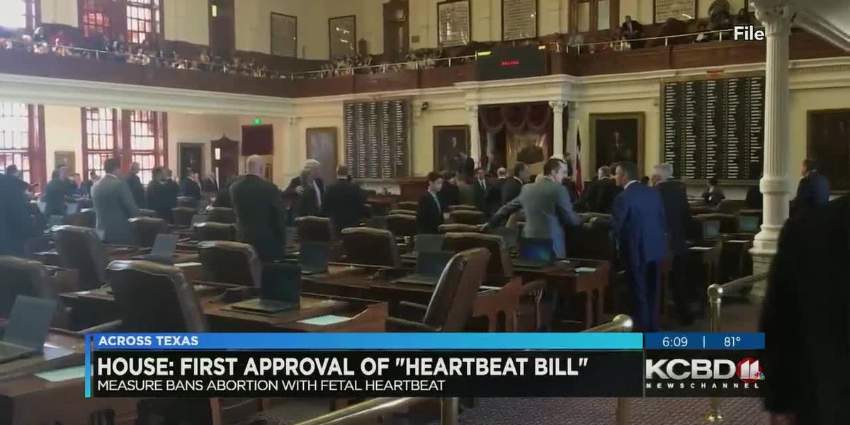 Texas House gives first approval to 'Heartbeat bill'