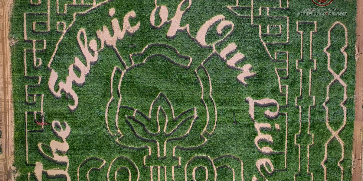 At'l Do Corn Maize reveals this year's design