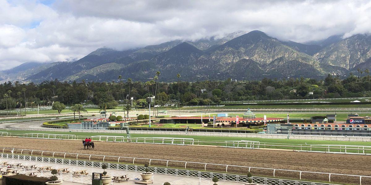 25th horse dies at Santa Anita Park since December