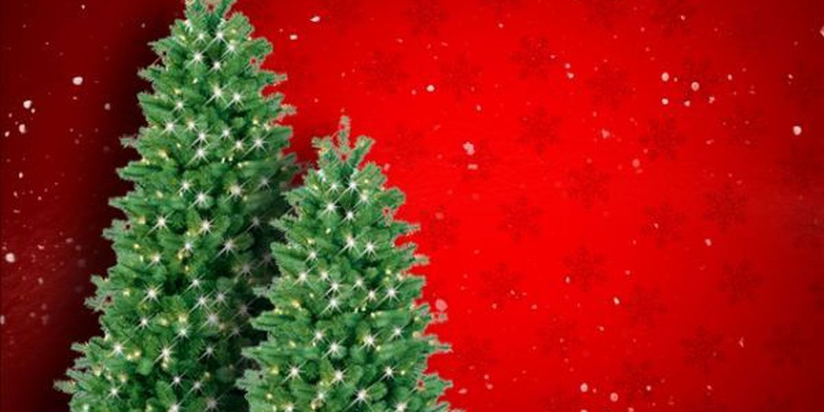 Solid Waste department offering tree-recycling options