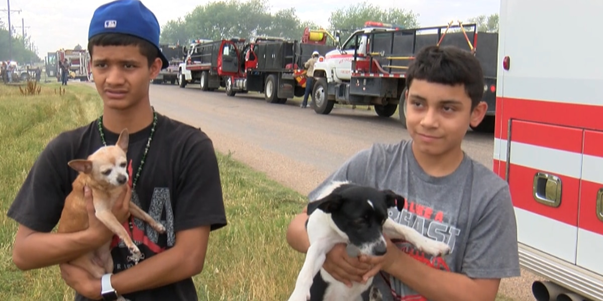 Two brothers save dogs out of burning West Lubbock home