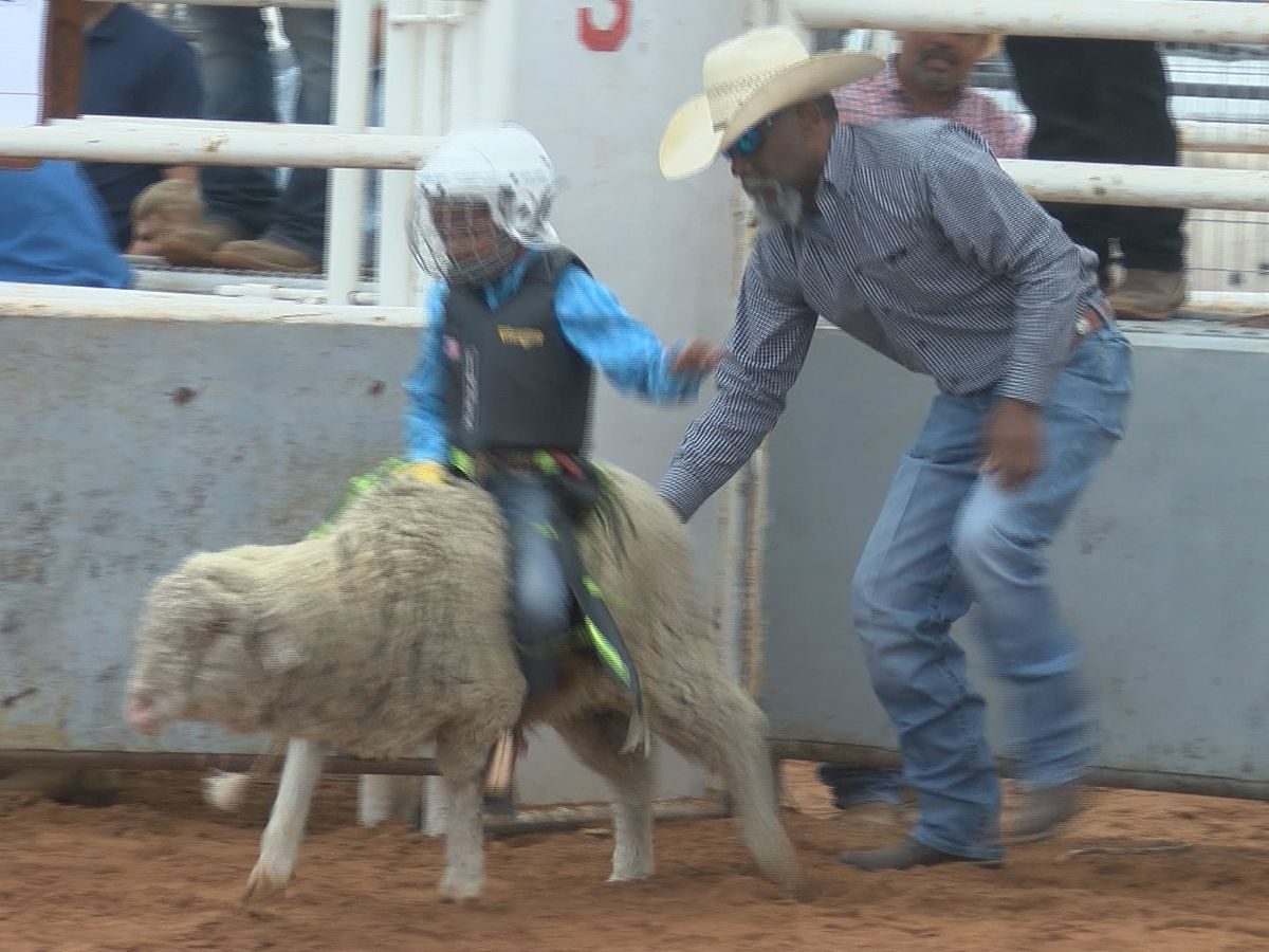 A rodeo family reunion in Seminole