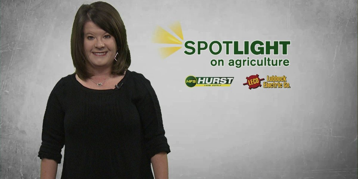 Spotlight on Ag: The risks of weather