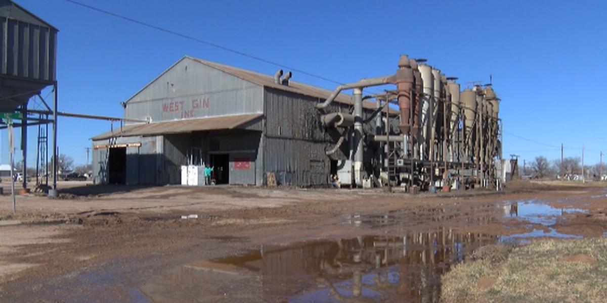 Brownfield cotton gin recovering following Thursday fire