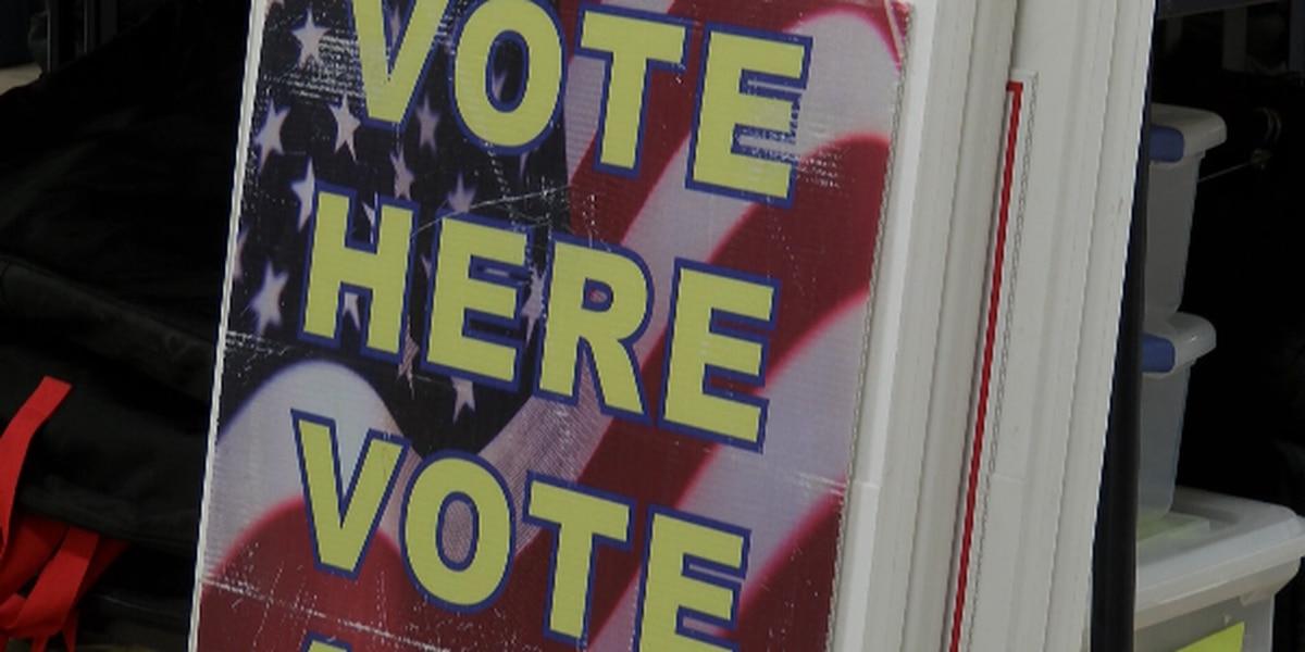 Political scientist analyzes high voter turnout