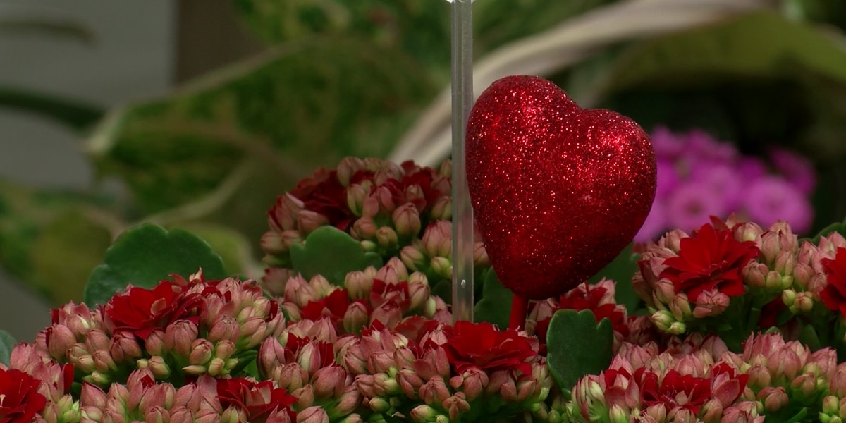 Lubbock flower shops remind customers to order early for Valentine's Day