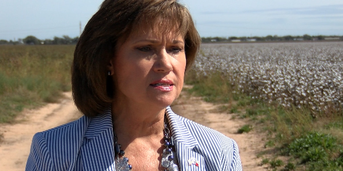 Commissioner Patti Jones responds to questions on land for expo center