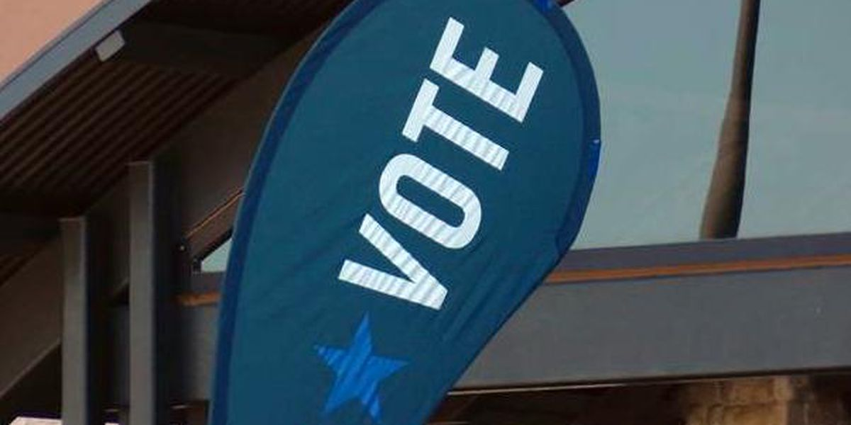 Early voting begins Monday for city, school elections set for May 1